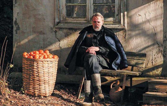 Как появились мандарины в Абхазии