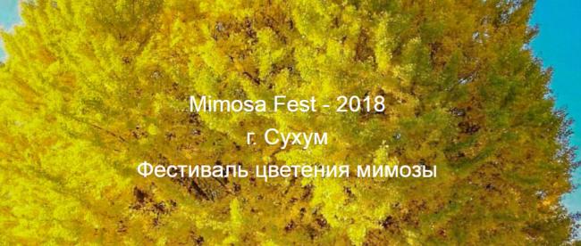 ФОРУМ-ВЫСТАВКА VISIT APSNY-2018