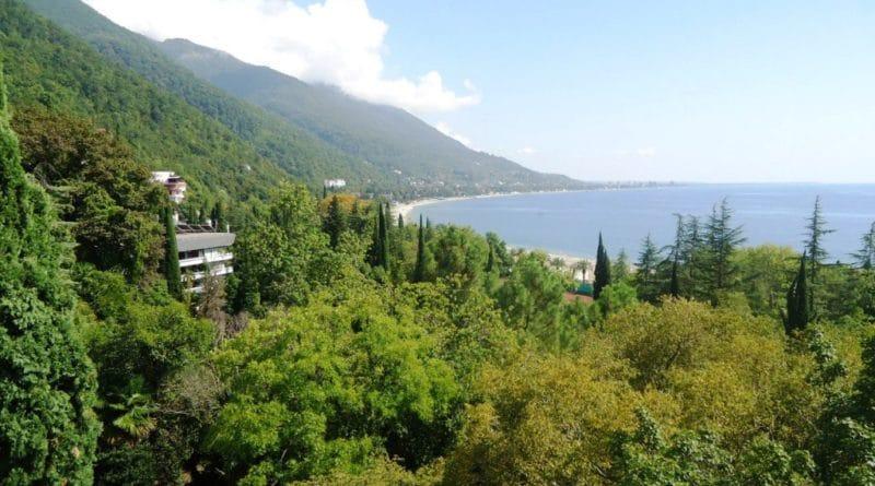 Статистика по продажам турпутевок в Абхазию