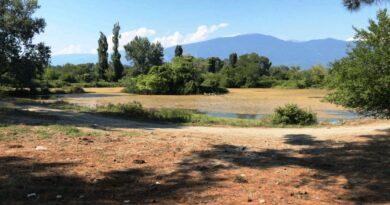 как правильно приобрести земельный участок в абхазии